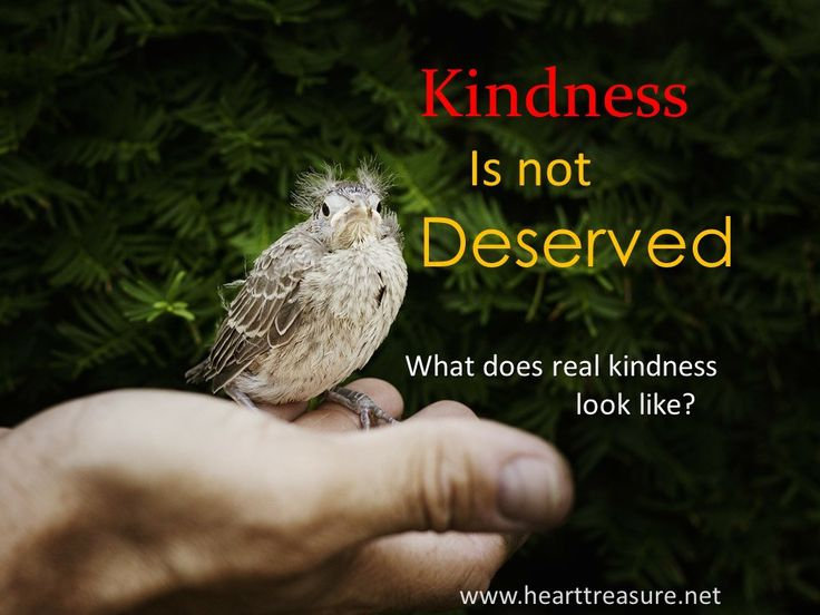 Heart Treasure #kindness #care #maturity #relationships #training Kindness is caring about others around you: wanting the best for them.  It depicts people who are gentle, mild-mannered, benevolent, compassionate, considerate, sympathetic, humane.