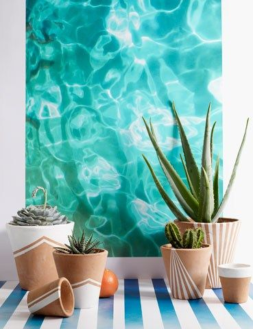 Jelly fish wallpaper. House & Garden (House and Garden)