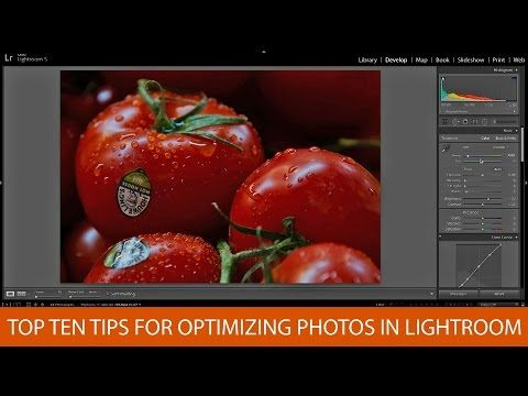 10 Tips for Optimizing Your Photos with Lightroom: A Primer on Basic Techniques