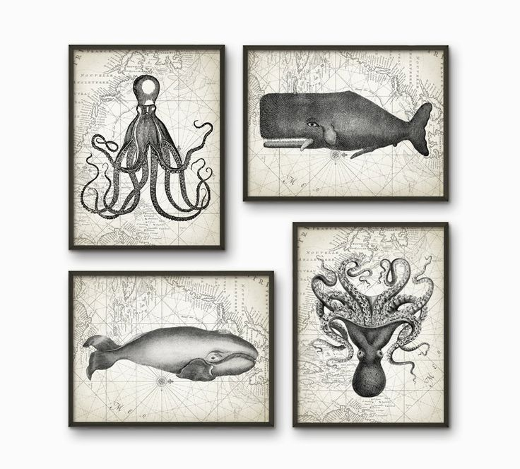 Whales And Octopus Bathroom Print Set of 4 - Bathroom Decor - Marine Biology Art - Whale And Octopus Illustration - AB217 by QuantumPrints on Etsy https://www.etsy.com/uk/listing/238033423/whales-and-octopus-bathroom-print-set-of