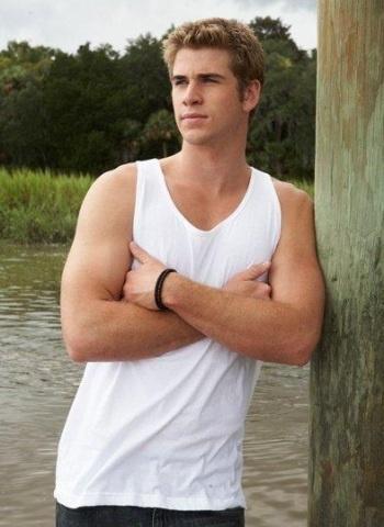 Liam Hemsworth...  los juegos del hambre  Gale Hawthorne