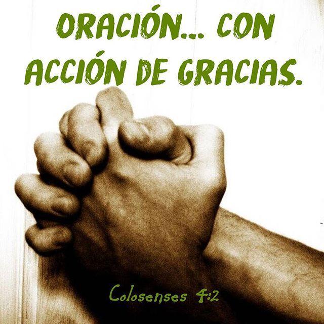 """Agradecimiento es adoración (VIDA DE ORACIÓN III) LEA: Colosenses 4:2, 3 ¿Alguna vez se ha sentado a orar y ha dedicado todo ese tiempo únicamente para darle gracias a Dios por todo lo que ha pasado, está pasando, y pasará, en su vida? Nuestro concepto general de oración es el tiempo que dedicamos ante Dios para """"pedir algo"""". Hemos aprendido que nuestra forma de buscar el favor de Dios es por medio de las suplicas, las oraciones, las peticiones; lo cual sí es correcto. Pero la oración no…"""