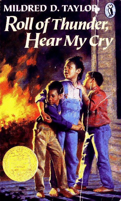 One of my fav books that opened my eyes to the beautiful world of African American authors