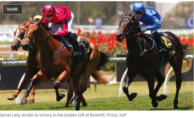 The Secret Lady crushed the #punter's hopes by beating Godolphin colt Plaque Tone at Rosehill. #profitablepunting #horseracingbetting online.