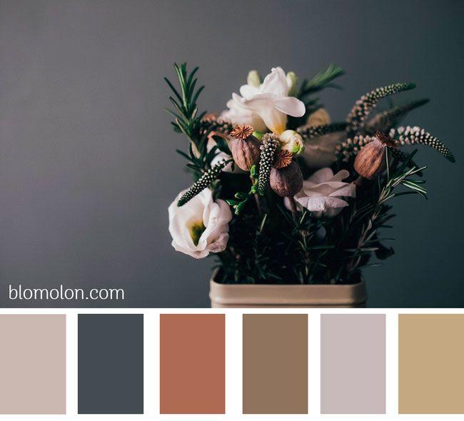Paletas de colores para inspirar..