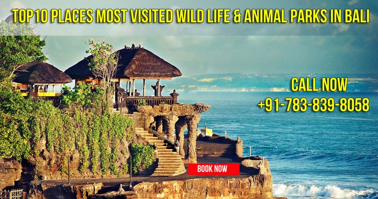 Bali tour packages is a very common thing among honeymooners and those who want to explore the best greenery in a fusion of beautiful beaches and ancient sites. Visit Here: http://www.bestdestinations.in/bali-holiday-packages/