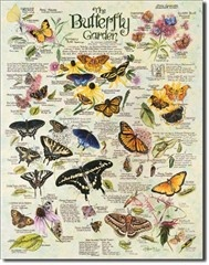 This vintage-style tin butterfly garden sign (with detailed info about each pictured species) hangs in my butterfly garden. via Buycoolshirts.com