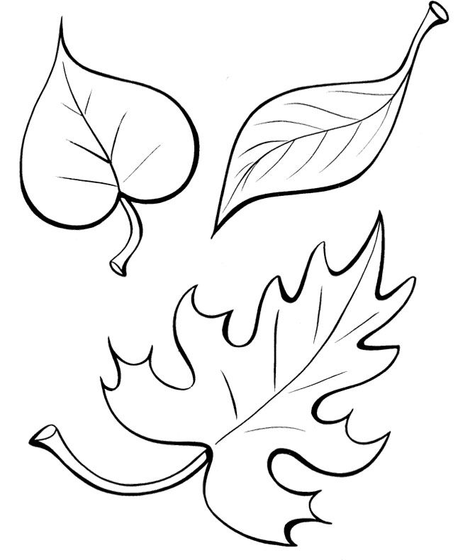 The Fall Leaves Coloring Pages