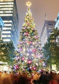 Christmas tree lighting, Martin Place, Sydney, Australia