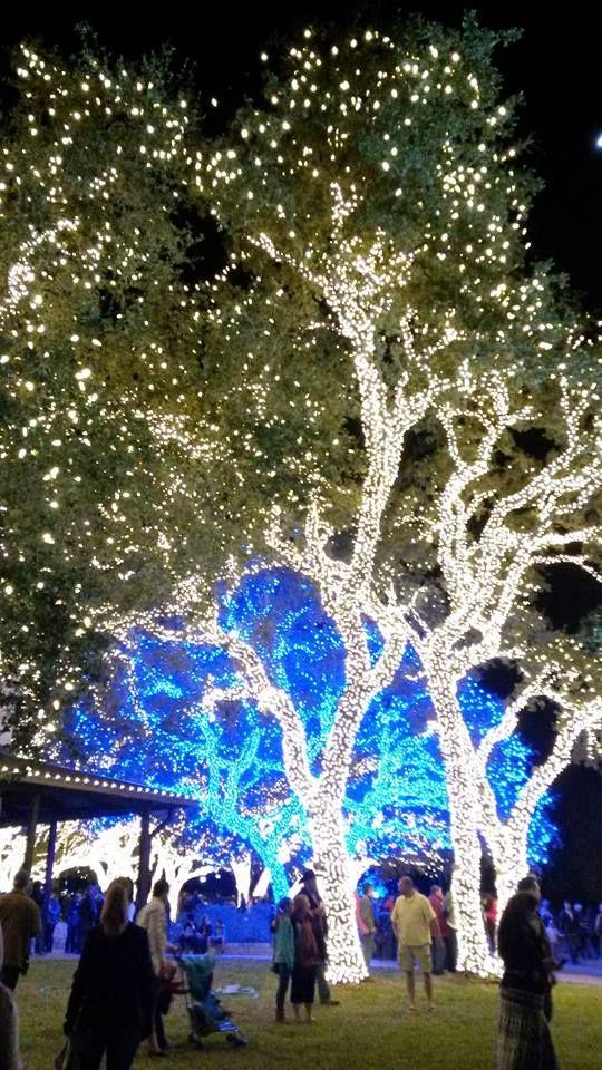 Lights at the Pedernales Electric Coop campus