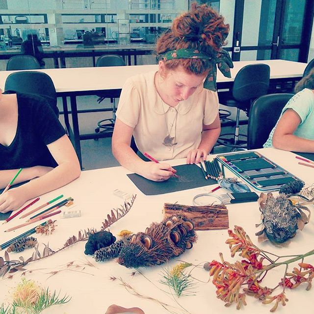Young artists deep in concentration. 11th Jan 2017, Leaves & Seeds Drawing Workshop, inside the Persoonia Lab at PlantBank, Australian Botanic Garden. A spread of Australian seed pods, flowers and leaves, provided by Australian Botanic Garden. Image via @naturescolourpalette (Instagram) botanic account of Creative Process Workshop.