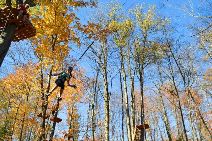 Discover Ontario's Treetop Aerial Parks