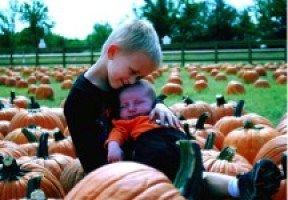 Flower Mound Pumpkin Patch