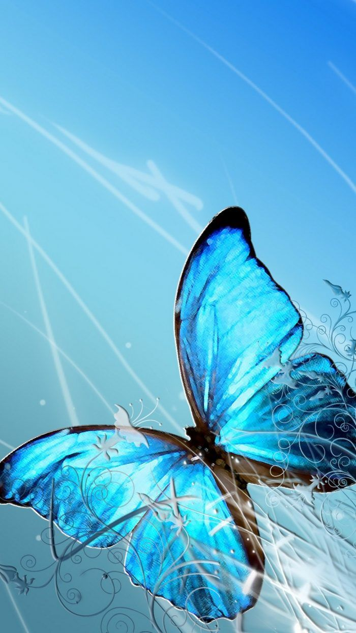 Blue Butterfly Wallpaper iPhone with HD Resolution