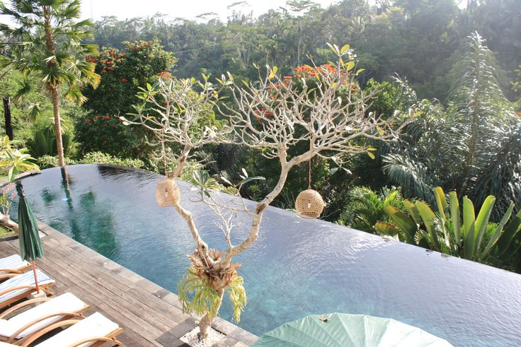 Alam Ubud. Bali. Hotel featured in the book Lost Guides - Bali.