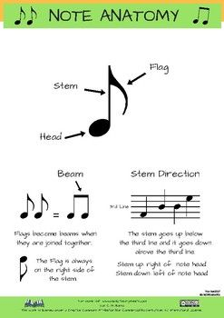 Musical Note Anatomy. Sheet showing the Head, Stem and Flag of the notes. Also the beams and the direction of the stem. Happy teaching!