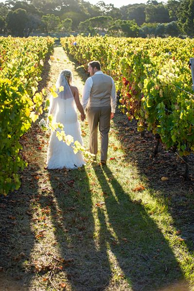 Taken at Wise Winery, Dunsborough by Roger Clark, Envy Photography. www.envyphotography.com.au