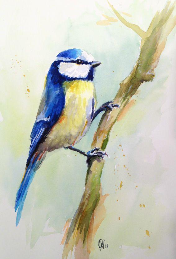 Aquarelle D Une Mesange Sur Une Branche Bird Realized With