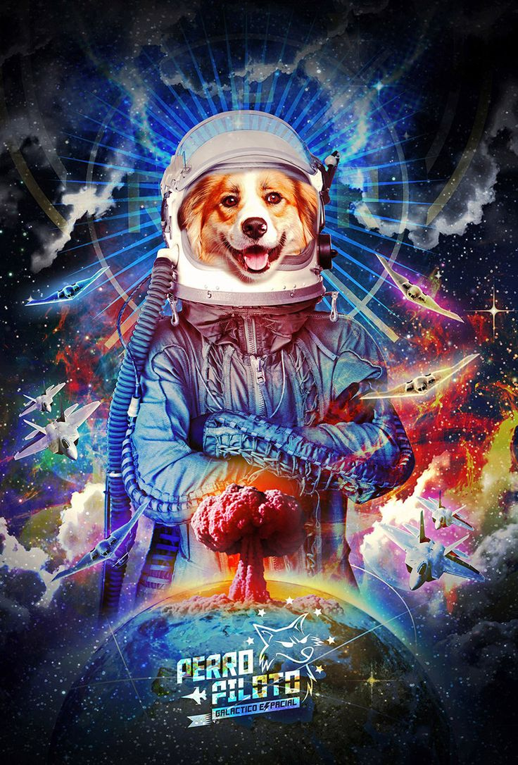 Perro Piloto Nuclear !