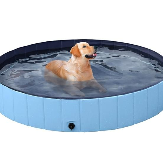 Free 2 Day Shipping Buy Foldable Pet Swimming Pool Bathing Tub Indoor Outdoor Blue63 X 12 Inch Xxl At Walmart In 2020 Dog Swimming Pools Swimming Pools Inflatable Pool