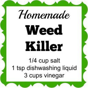 Homemade Weed Killer with amounts