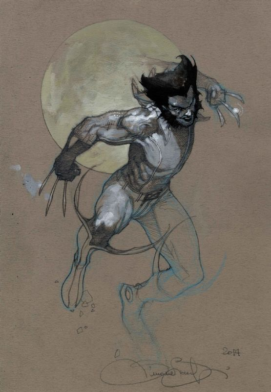 Wolverine by Simone Bianchi, in Martin Tirtawigoena's Simone Bianchi Comic Art Gallery Room - 1192886