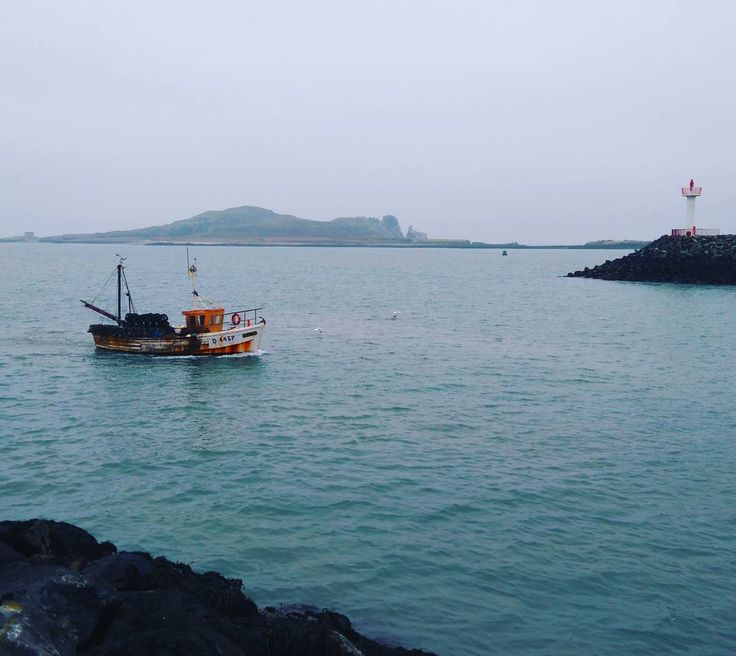 Fishing boat returning to Howth harbour hopefully with lots of delicious fish! #fishing #boat #Ireland