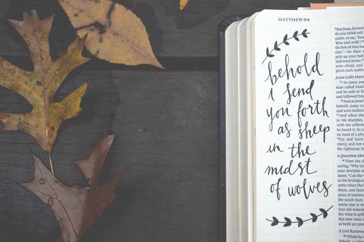 Matthew 9:4