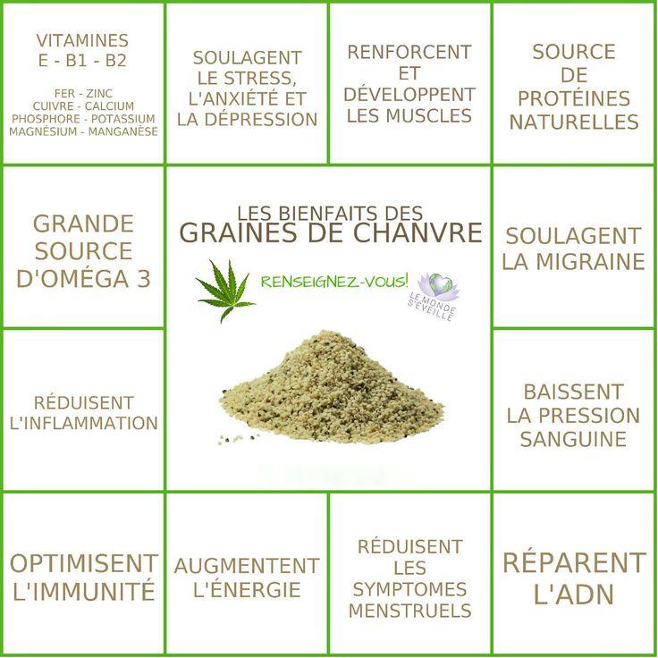 Les Bienfaits des graines de chanvre | GRAINES DE CHANVRE Le Monde s'Eveille…