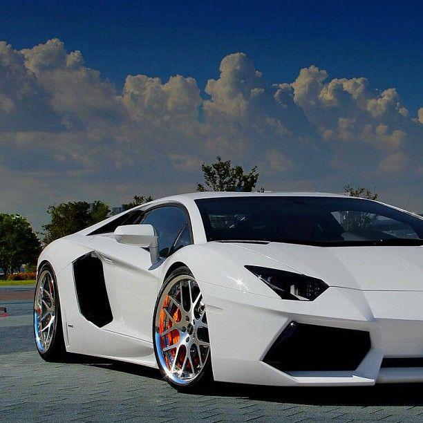 Cars Lamborghini: 219 Best Lamborghini Images On Pinterest