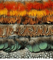 feathers: Decor Ideas, 16 Parties, Costumes Parties, Artsy Fartsi, Feathers Trim, Fabrics Tulle, Art Supplies, Art Assoc, Crafts Supplies