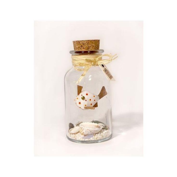 Mini Aquarium in a Bottle