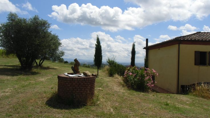 #farmSilnalunga  with #olivegrove and #vineyards www.villainversilia,it