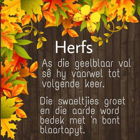 Herfs
