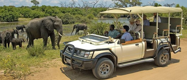 Full Day Chobe Trip from Livingstone, Zambia. Enjoy game viewing in this iconic park known for it's high numbers of elephant.