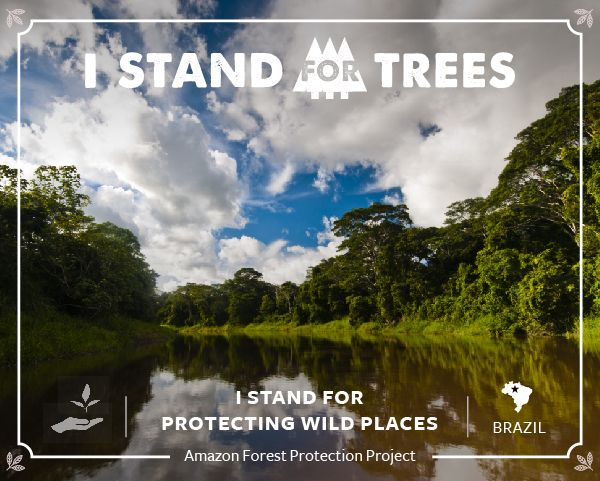 Amazon Forest Protection Project... Go to standfortrees.com and help out!!