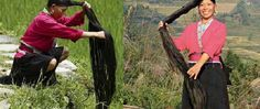 O segredo para ter um cabelo longo e macio e sem gastar muito com isso! - http://comosefaz.eu/o-segredo-para-ter-um-cabelo-longo-e-macio-e-sem-gastar-muito-com-isso/