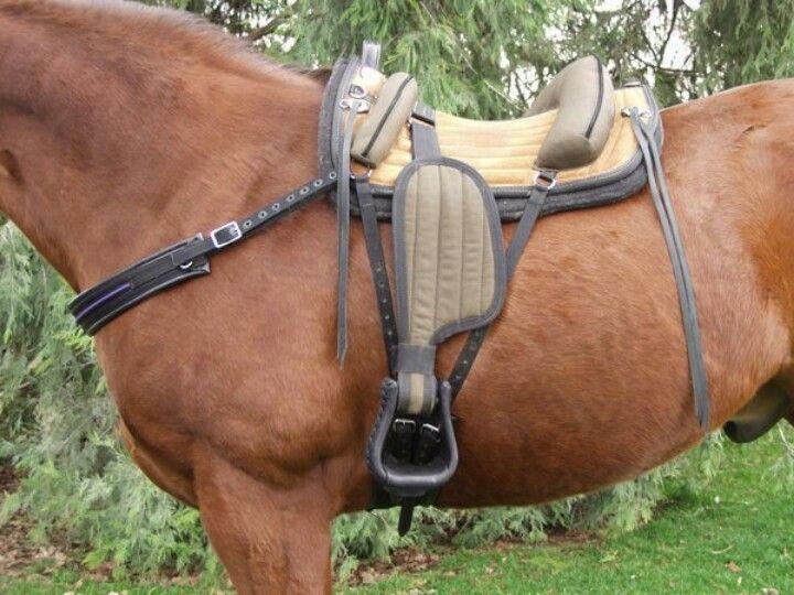 Treeless saddle...interesting~