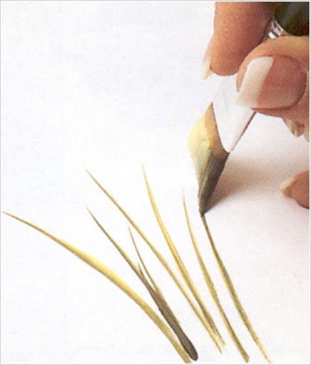 DONNA WORKSHEET - TEREPINTURA - Álbumes web de Picasa