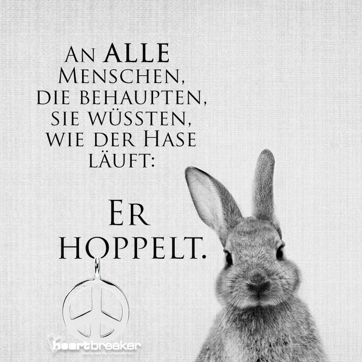 An ALLE Menschen, di e behaupten, sie wüssten, wie der Hase läuft: Er hoppelt.