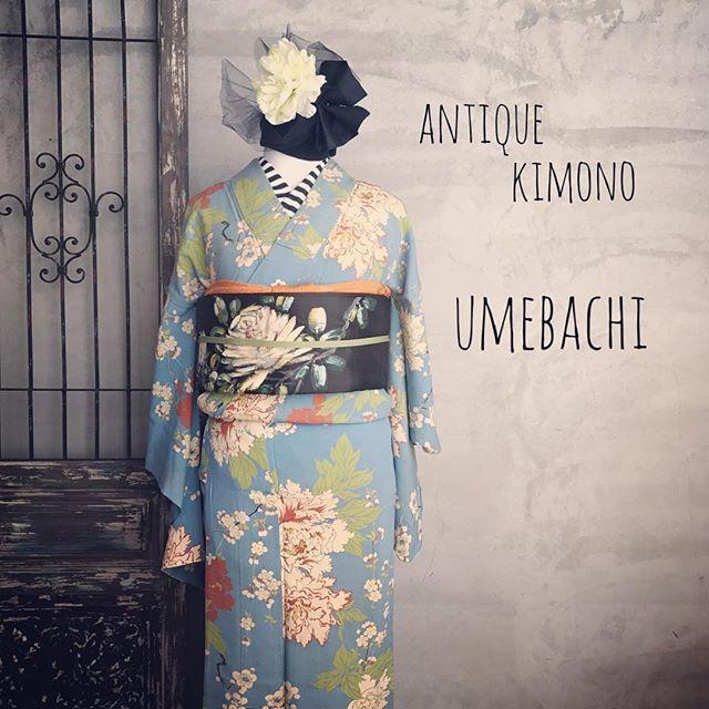 ・ アンティークのお着物の生地によく使われている錦紗ちりめんは ・ 薄くて儚くて…でも優しい生地です ・ 今の時代なかなか見られない、希少価値の高い生地なんです✨ ・ 着物…¥25.000 帯…¥30.000 ・ ・ #着物コーディネート #着付け#大正ロマン#アンティークきもの梅鉢#アンティーク着物コーディネート #アンティーク着物レンタル#着付け教室姫路#antique#kimono#姫路#着物##姫路城##姫路城近く#コーディネート#おしゃれ#アンティーク着物#麻の葉紋様 #おしゃれな帯結び#散策#himeji#himejicastle#kimonoumebachi#rental#기모노 #기모노대여 #기모노대여히메지