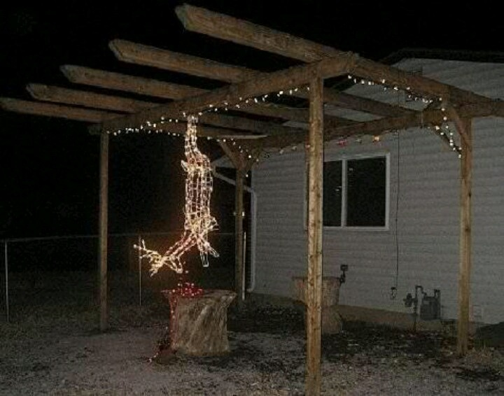 Redneck christmas lights ..deer processing | Tis the Season to be Jolly |  Redneck christmas, Christmas humor, Funny - Redneck Christmas Lights ..deer Processing Tis The Season To Be