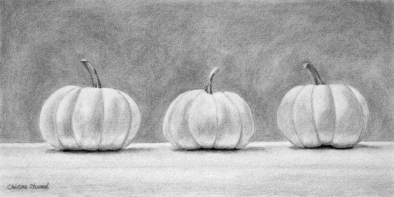 Pumpkin Original Fine Art Charcoal Drawing by Christina Steward, $225.00
