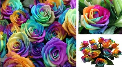 How to make rainbow roses. This could be a fun science lesson/experiment for kids if you add an explanation.