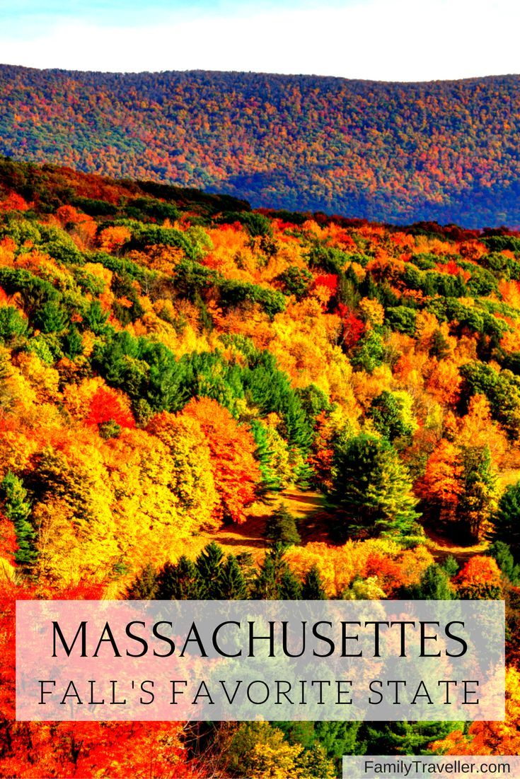 The Northeast Is One Of The Most Beautiful Places In The Usa Especially During Fall Plan Usa Travel Destinations Best November Vacations Cool Places To Visit
