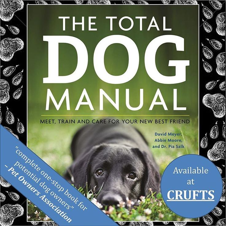 """For those lucky enough to be going to #crufts this year keep an eye open for The Total Dog Manual - the """"complete one-stop book for potential dog owners"""" Pet Owners Association www.quillerpublishing.com @kclovesdogs #crufts2016 #crufts125 #crufts #thetotaldogmanual #totaldog #totaldogmanual #dogtraining #dog #dogs #dogcare #dogsofinstagram #puppy #puppycare #puppytraining"""