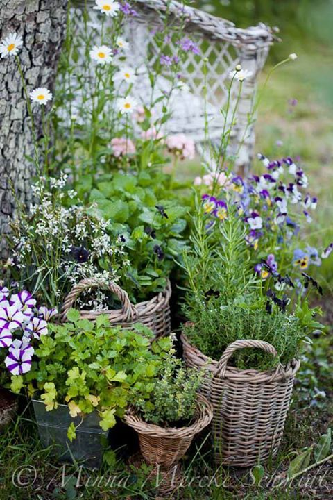 love the idea of baskets...