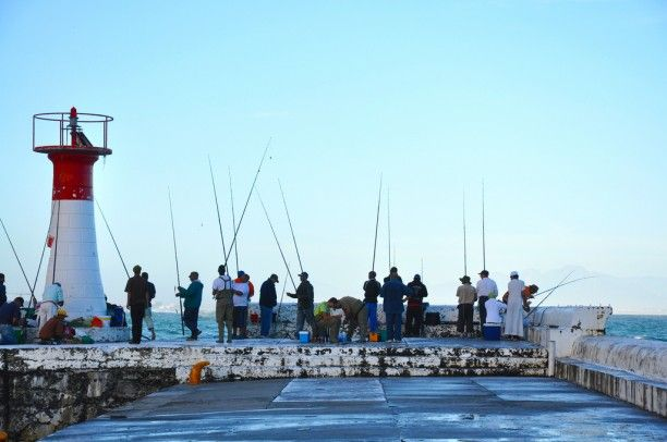 Fishing rods fill Kalk Bay Harbour – Flickr pic of the day – Cape ...