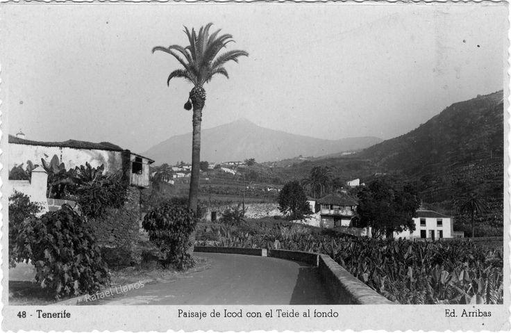 Icod de los vinos fotos antiguas de tenerife pinterest for Cream valencia fotos