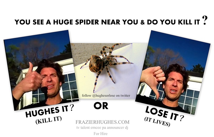 She spins her web on your face or well you almost walk into this huge #spiderweb and you think oh my gosh this thing is scaring the #$!@ our of me! Do you kill this #insect? -Hughes it or Lose it?